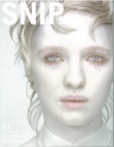 snip11
